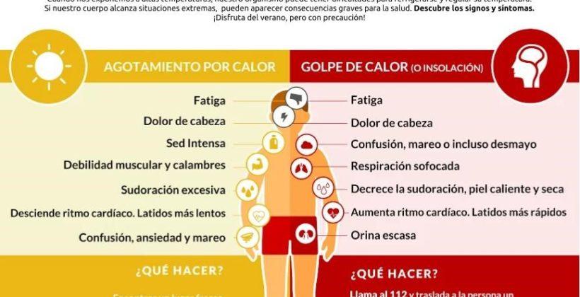 (Español) Efectos del calor extremo en el cerebro y en el organismo.